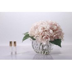 Cote Noire Luxury Range Hydrangea -Blush in Crystal Vase