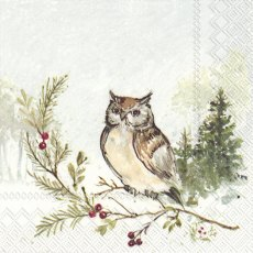 Woodland Owl Christmas Napkins (Pack of 20)