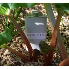 Gin In A Tin No.6 Rhubarb, Cinnamon & Ginger 50cl