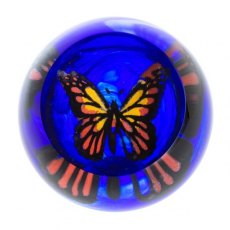Abstract Butterfly Proud Monarch Paperweight
