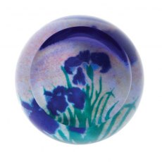Abstract Artistic Impressions Irises Paperweight