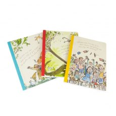 Roald Dahl Exercise Books Set of 3