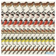 Emma Bridgewater Birds Paper Lunch Napkins