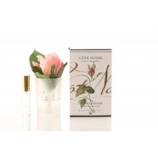 Cote Noire Perfumed Natural Touch Cherry Blossom Pink Rose Bud in Frost Glass