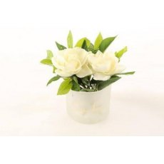 Cote Noire Double Gardenia Flower in Frost Glass