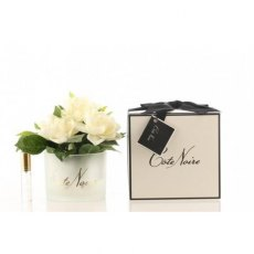 Cote Noire Triple Gardenia Flower in Frost Glass