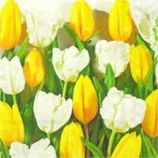 Yellow Tulips Lunch Napkins