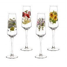 Botanic Garden Champagne Flutes Glasses Set of 4 Assorted Motifs