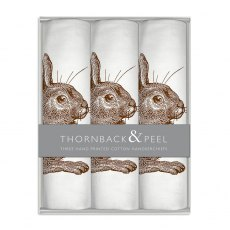 Brown Rabbit Handkerchief Box