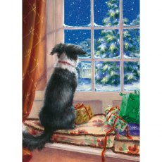Dog On The Windowsill Charity Christmas Cards
