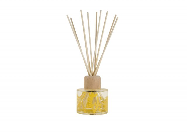 Arthouse Unlimited Cactus Reed Diffuser Wisteria, White Tea & Orange