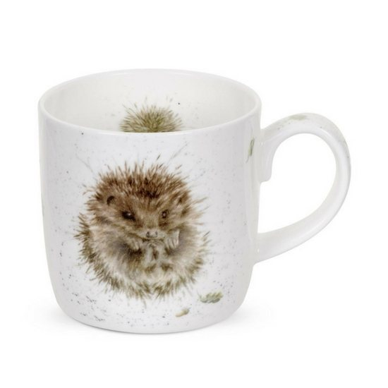 Portmeirion Royal Worcester Awakening Hedgehog China Mug