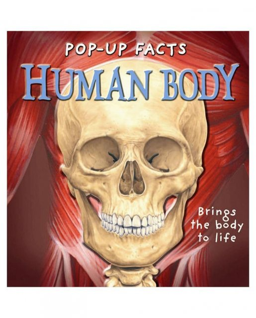 Pop-up Facts Human Body