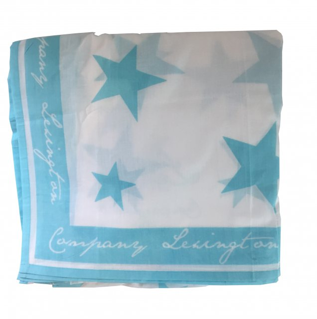 Lexington Lexington Seaside Collection Star Drape - Turquoise