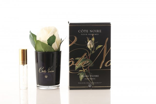 Cote Noire Cote Noire Perfumed Natural Touch Ivory White Rose Buds in Black Glass