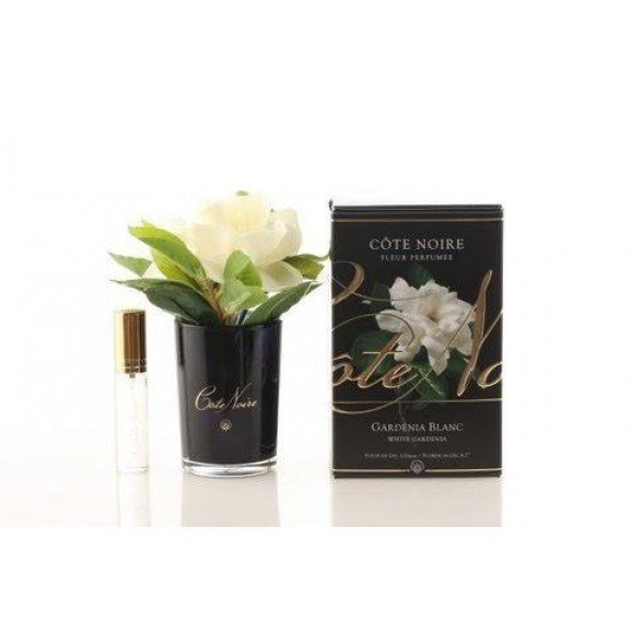 Cote Noire Cote Noire Gardenia Single Flower in Black Glass
