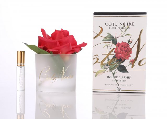 Cote Noire Cote Noire Single Carmine Red Rose With Fragrance in Frost Glass