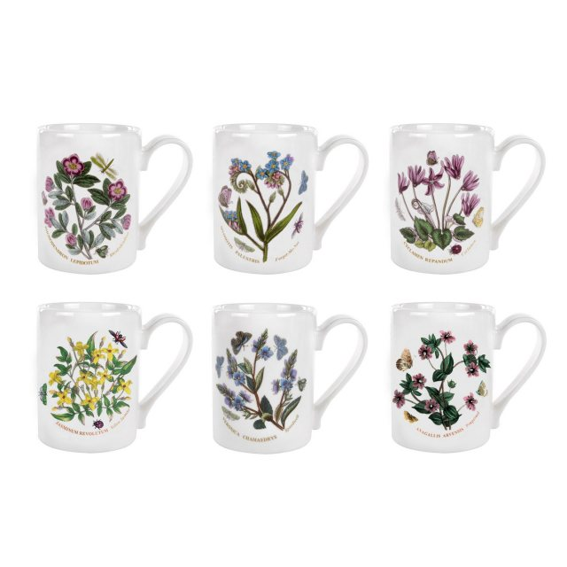 Portmeirion Botanic Garden Coffee Mugs Set of 6