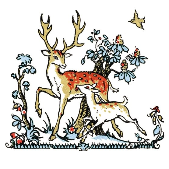 Stag & Fawn In the Snow Christmas Cards