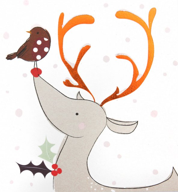 Caroline Gardner Reindeer & Robin Charity Christmas Cards Pack of 5